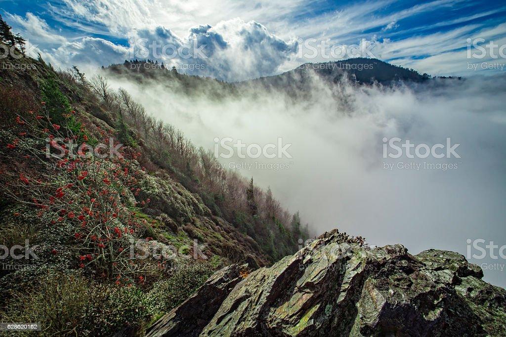 Appalachian Trail, Great Smoky Mountains National Park stock photo