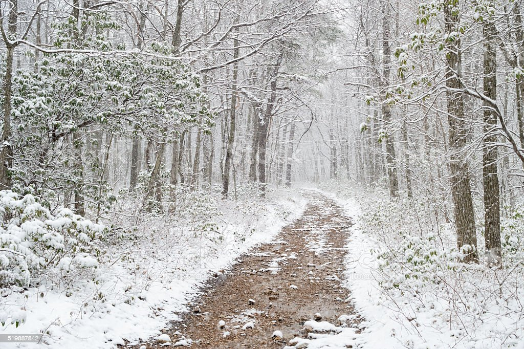 Appalachian trail in winter stock photo
