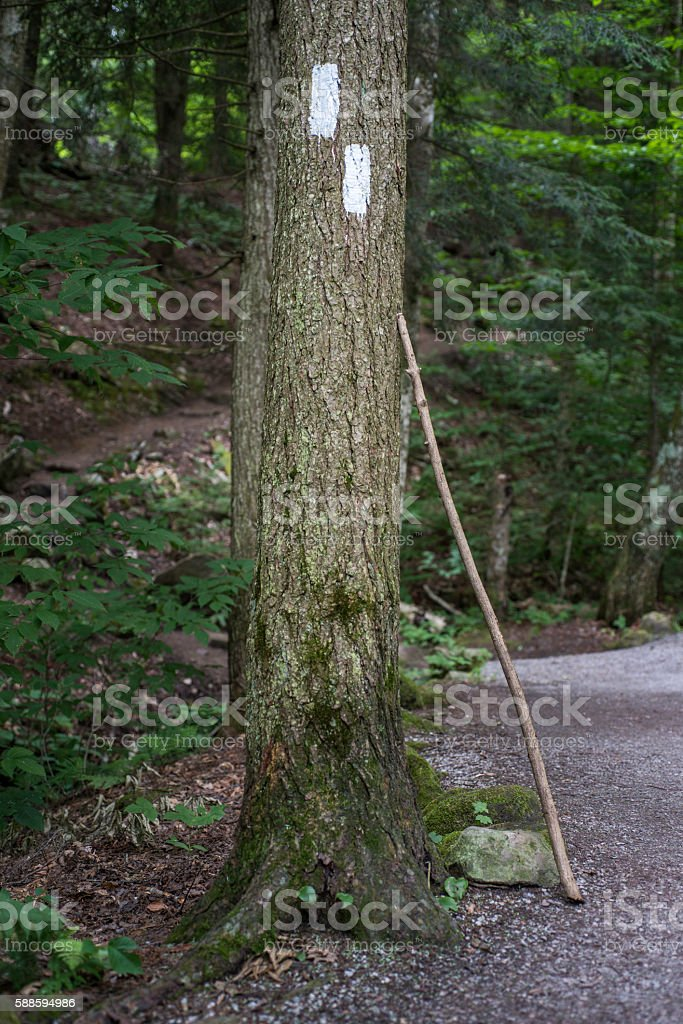 Appalachian Trail Markers stock photo