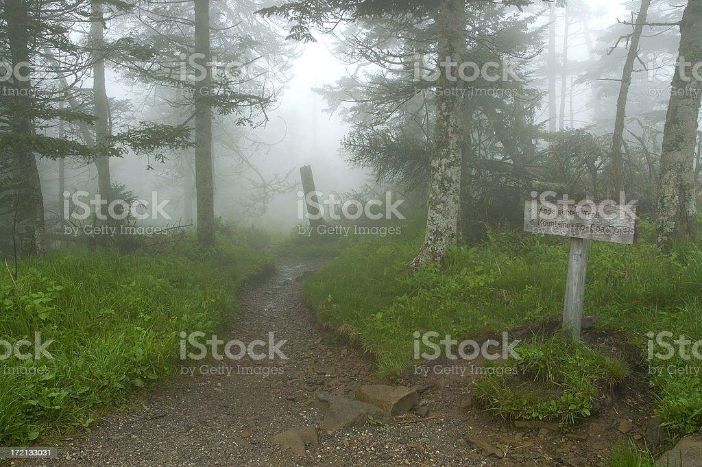 Appalachian Trail stock photo