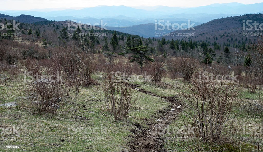 Appalachian trail running through the Mt. Rogers area stock photo