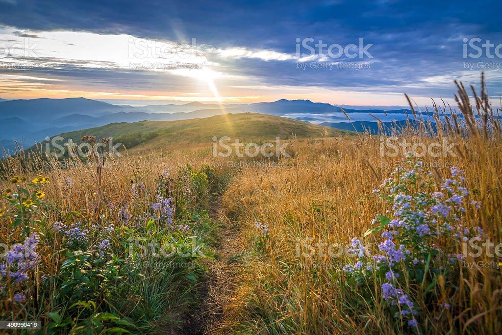 Appalachian Trail Sunrise stock photo