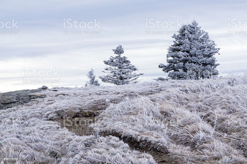 Appalachian trail winter hike stock photo
