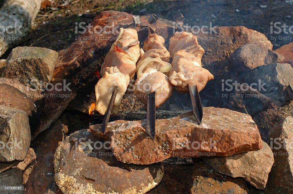 Appetizing roasted shish kebab (shashlik). royalty-free stock photo