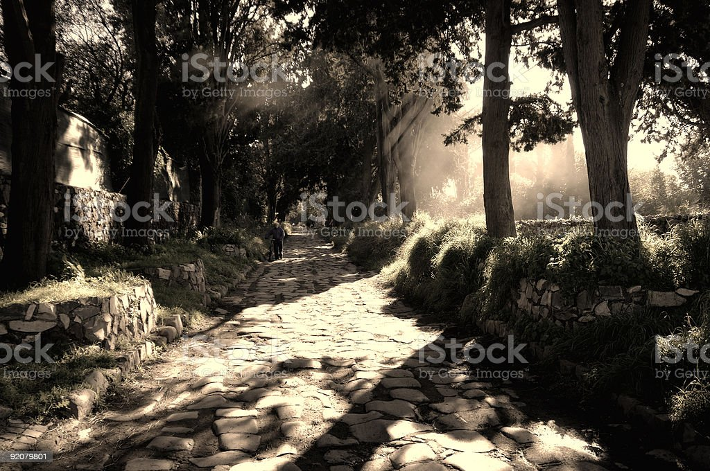 Appian Way Mist b&w royalty-free stock photo