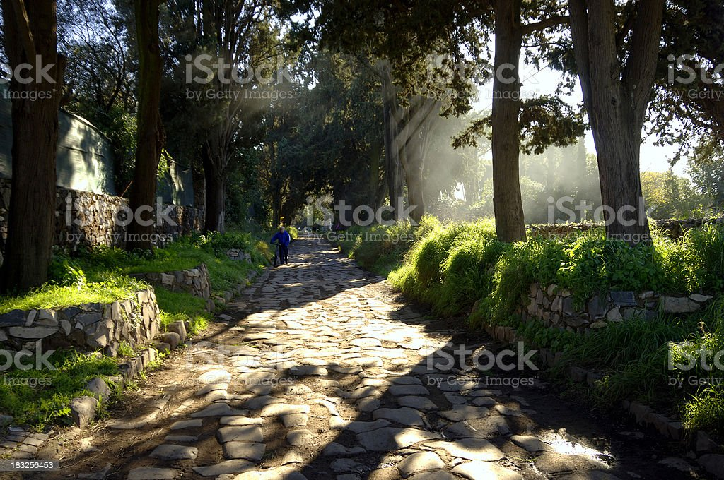 Appian Way Mist royalty-free stock photo