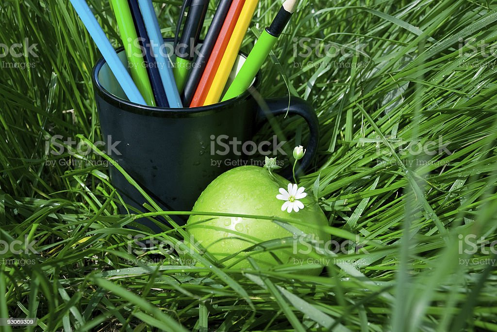 apple and a cup of pencils lying in the grass stock photo
