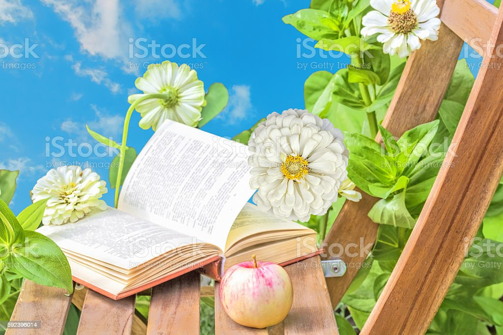 Apple and book on a wooden table and flowers zinnias stock photo