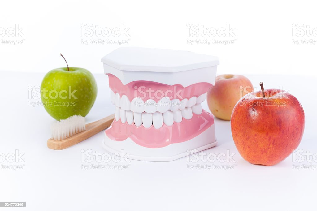 Apple and model of a human teeth / dental health stock photo