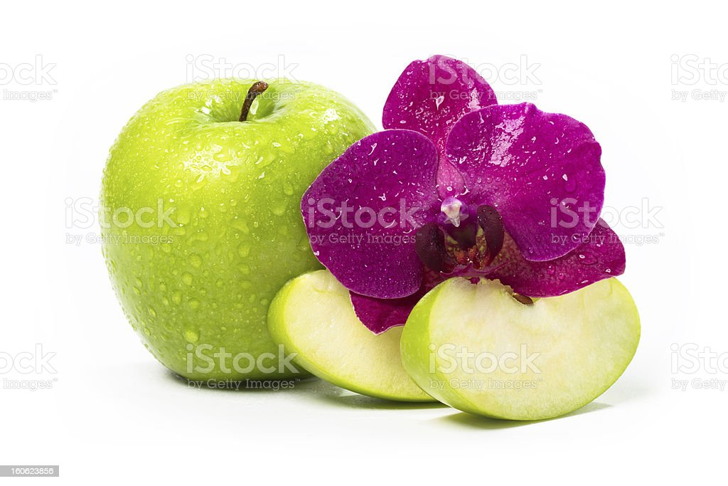 Apple and orchid. royalty-free stock photo
