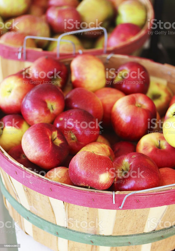 Apple Bucket stock photo