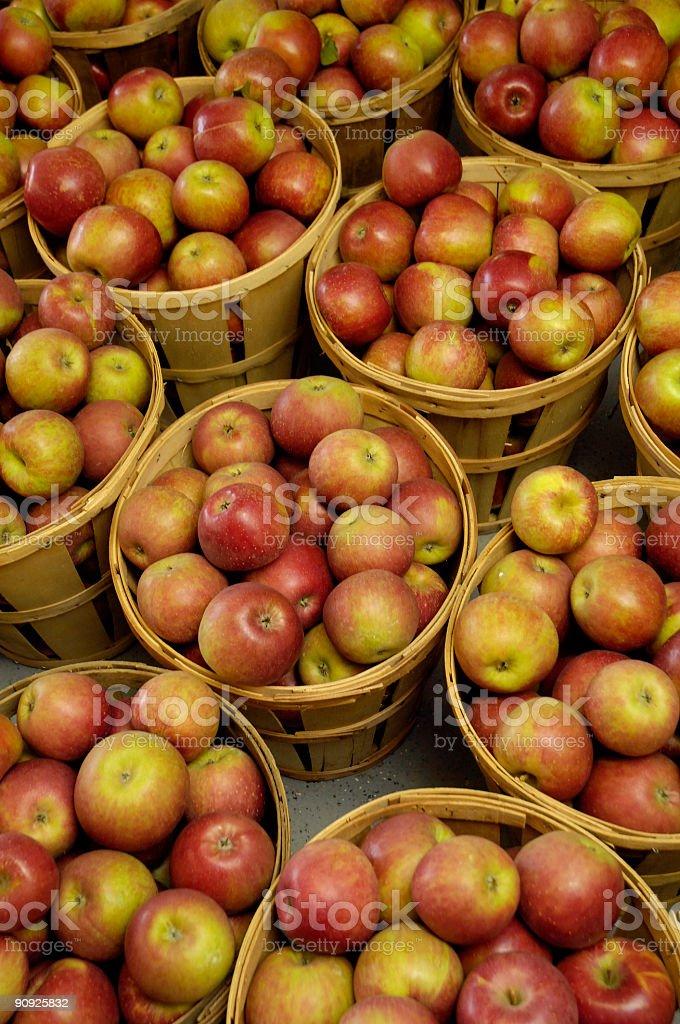 apple bushels stock photo