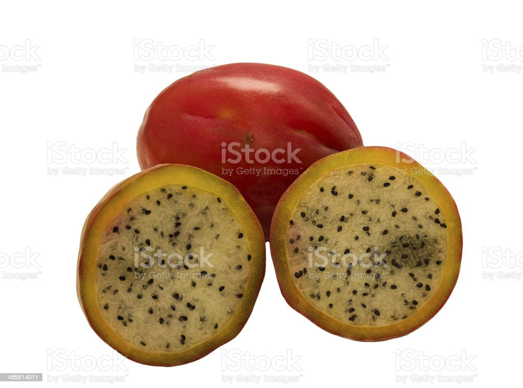 Apple cactus . stock photo