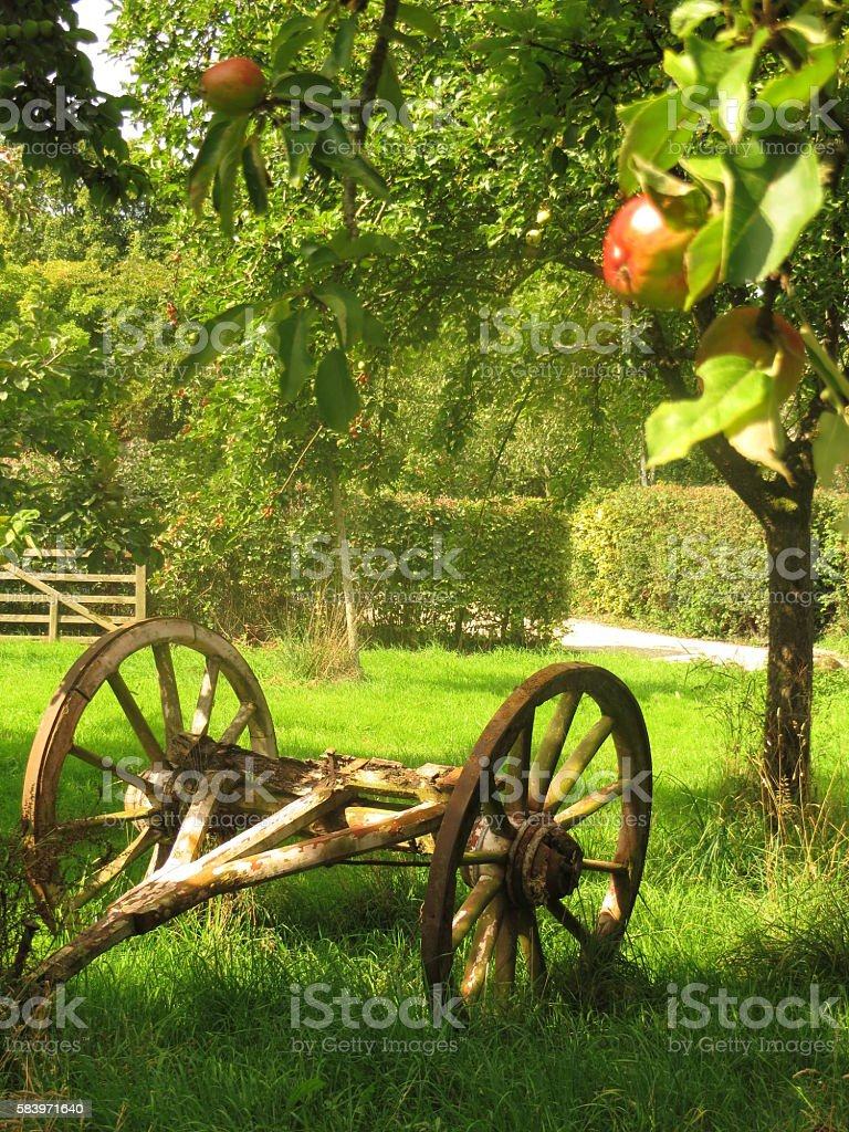 Apple Cart and Trees at Somerset Cider Farm stock photo