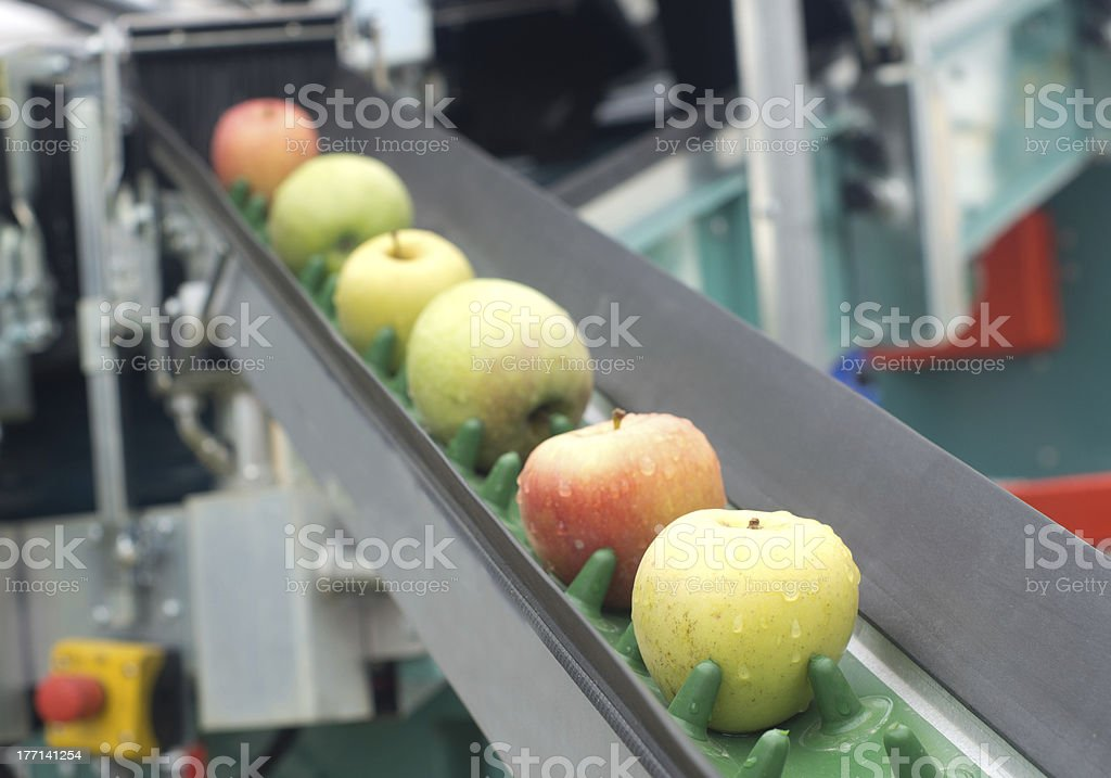 Apple conveyor belt stock photo
