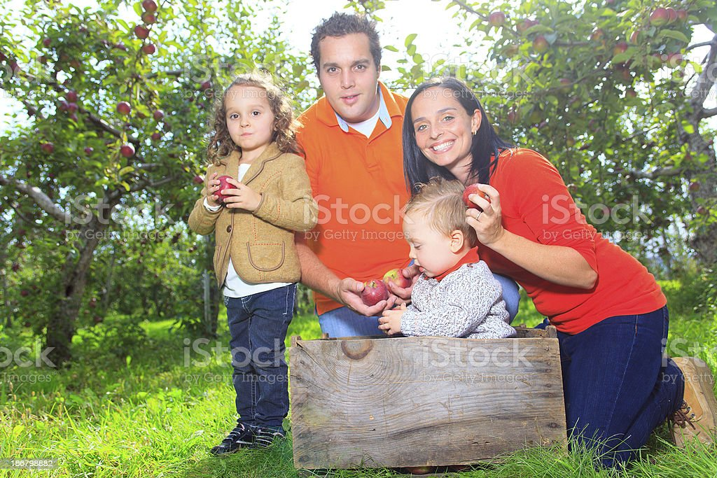 Apple Family - Standing royalty-free stock photo