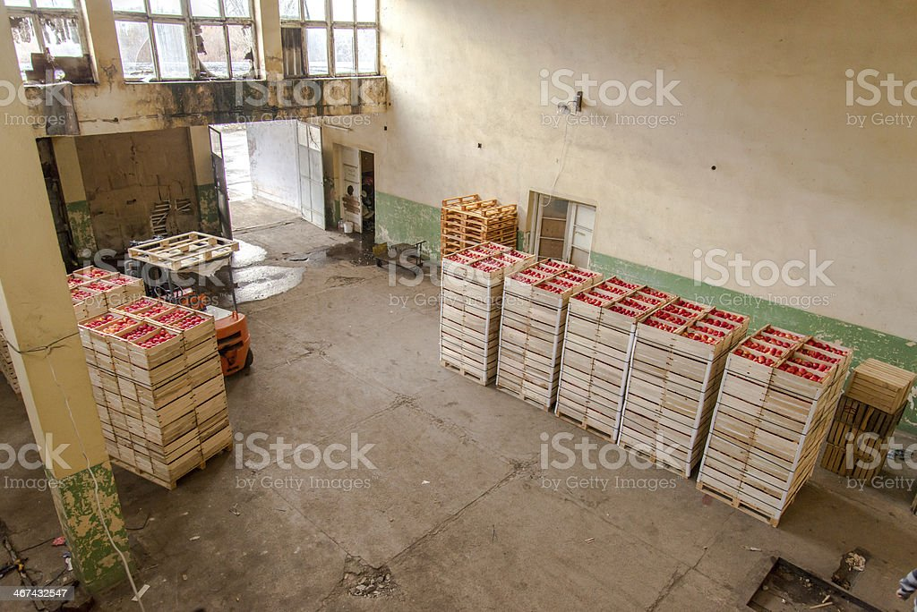 Apple fruits warehouse stock photo