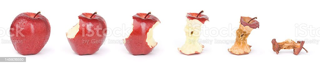 Apple in a sequence from fresh till dried royalty-free stock photo