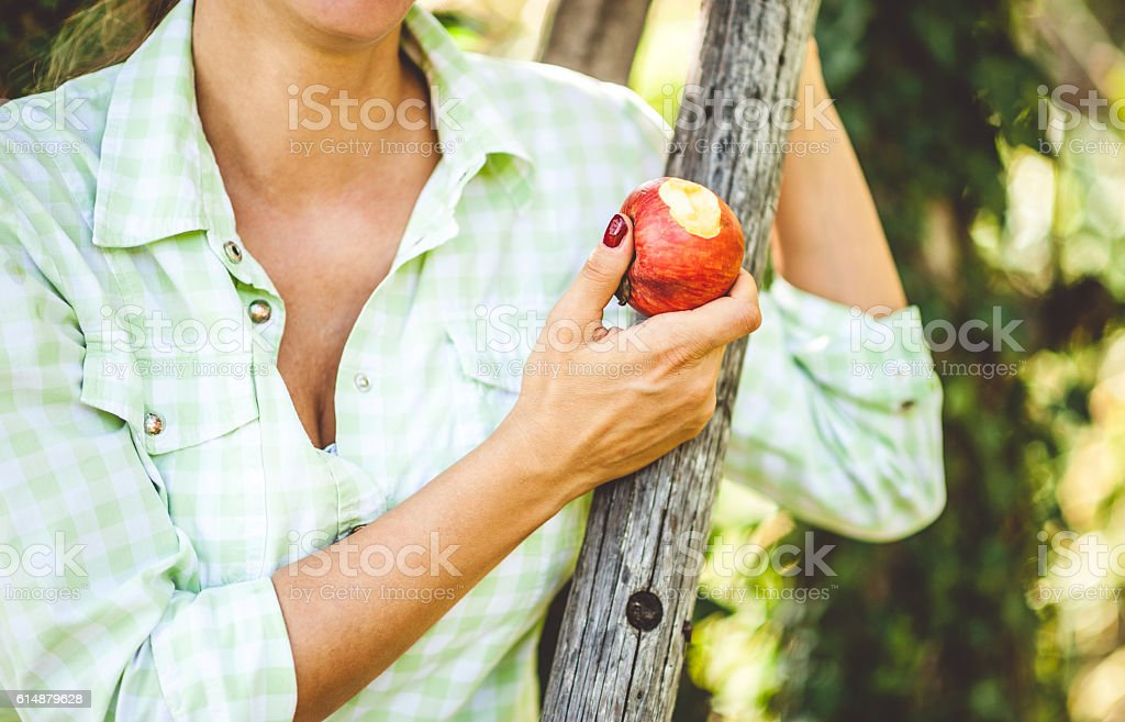 Apple in a Womans Hand stock photo