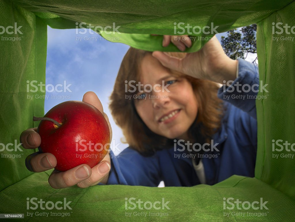 Apple in the bag royalty-free stock photo