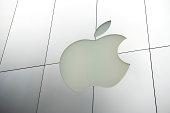 Apple Inc Logo in Brushed Metal Store Facade