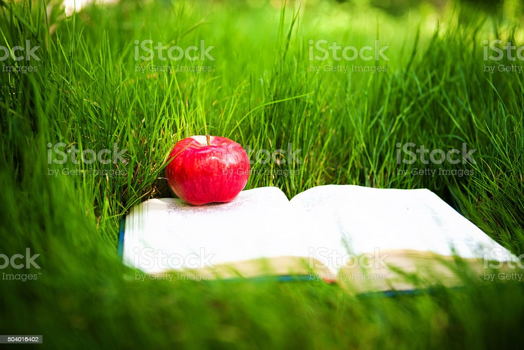 apple on the opened book stock photo