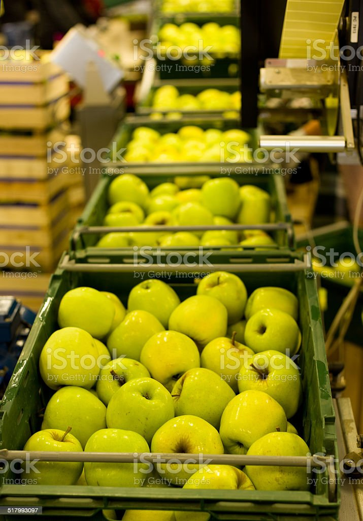 Apple packaging stock photo