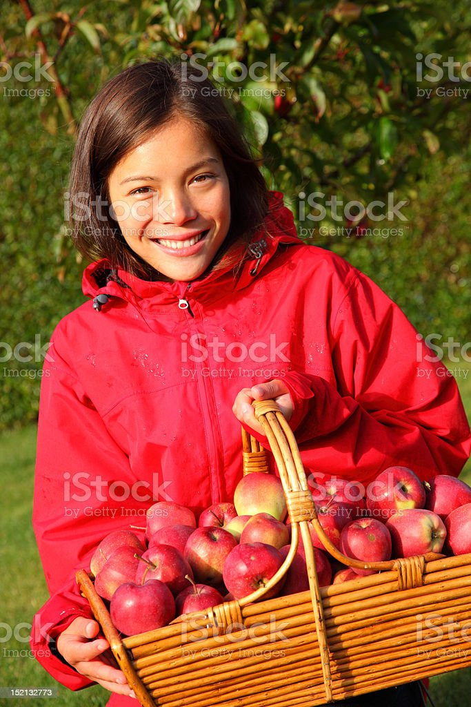 Apple picking autumn girl royalty-free stock photo