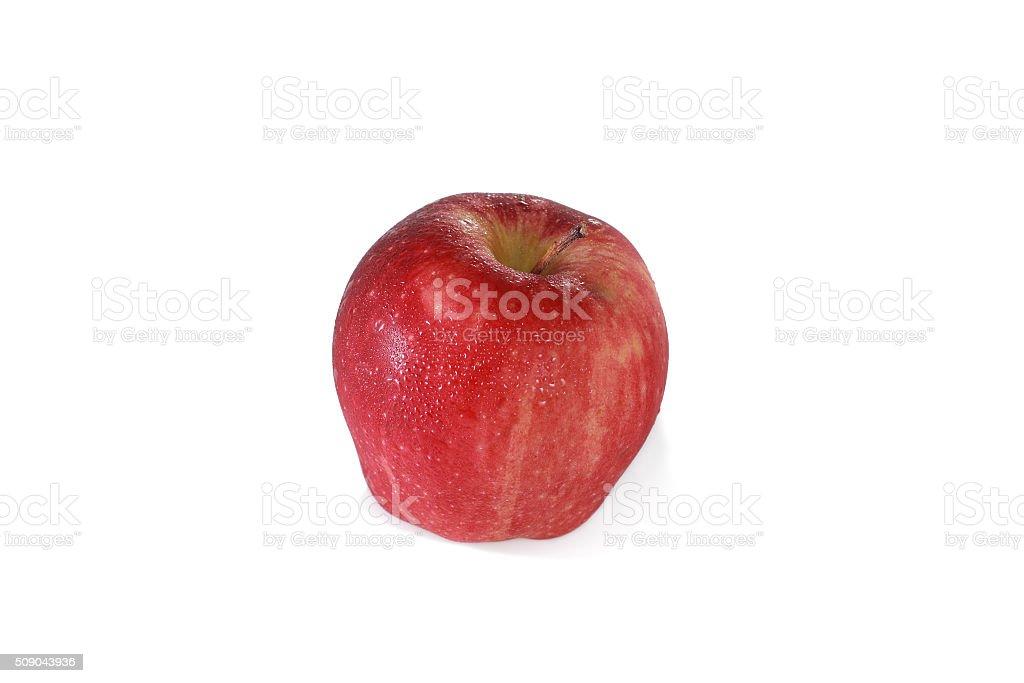 apple stock photo
