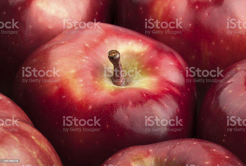 apple red closeup stock photo
