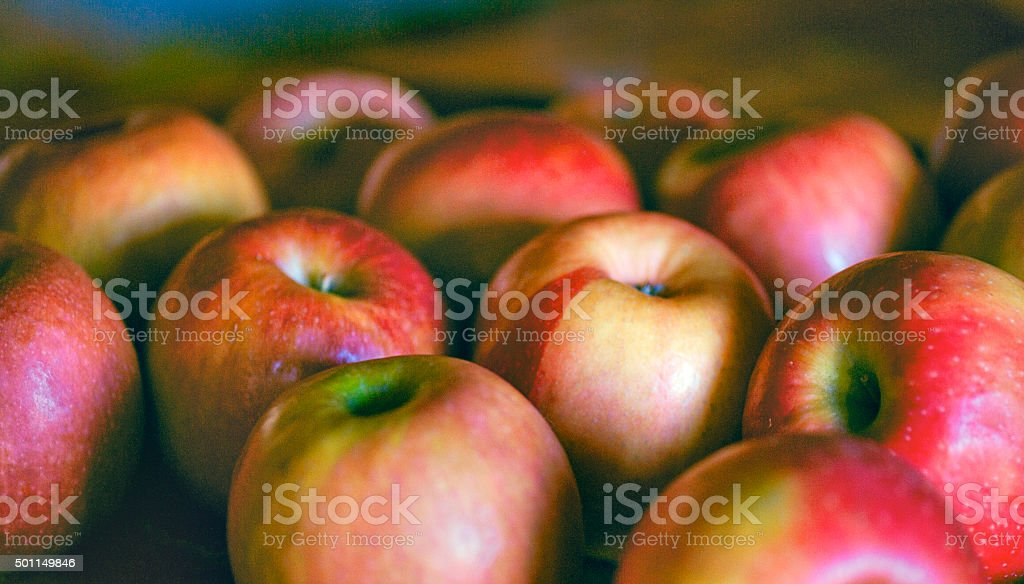Apple, Red Organic, Honey-crisp on White Background stock photo