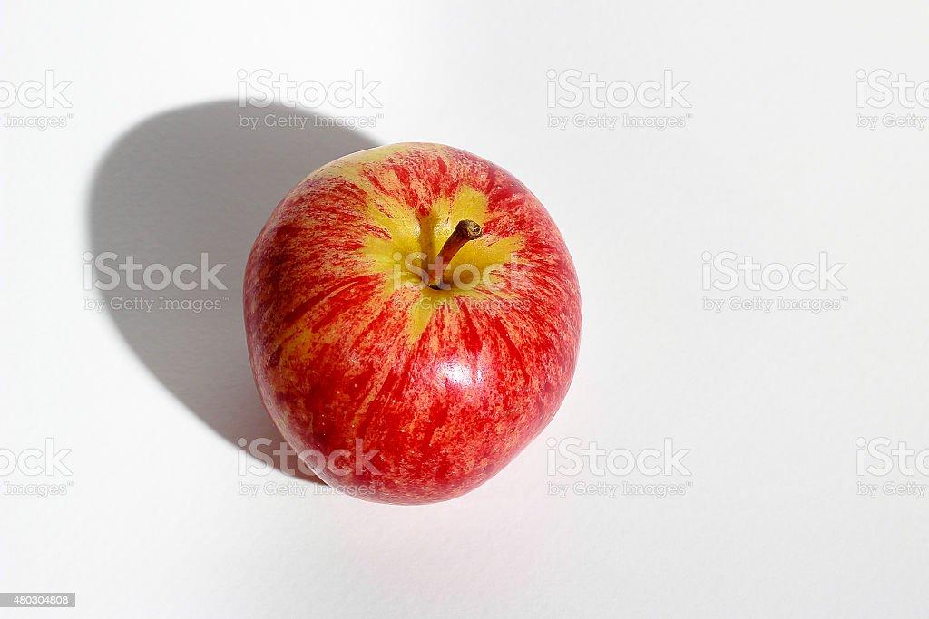 Apple Red. stock photo