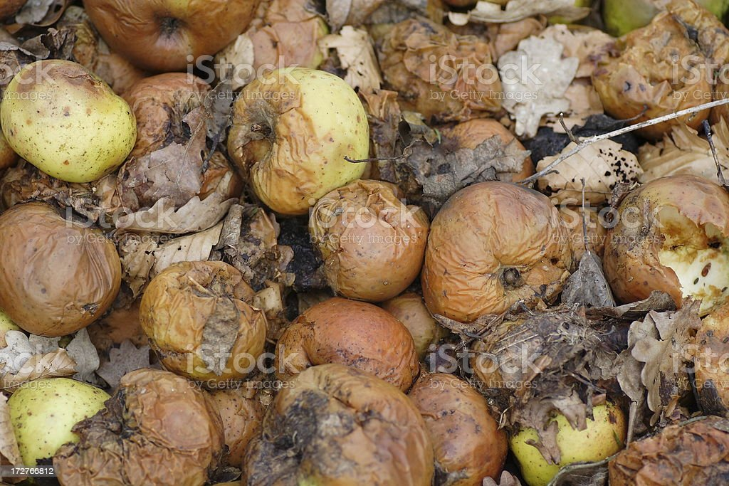 Apple - Rotten fruit background stock photo