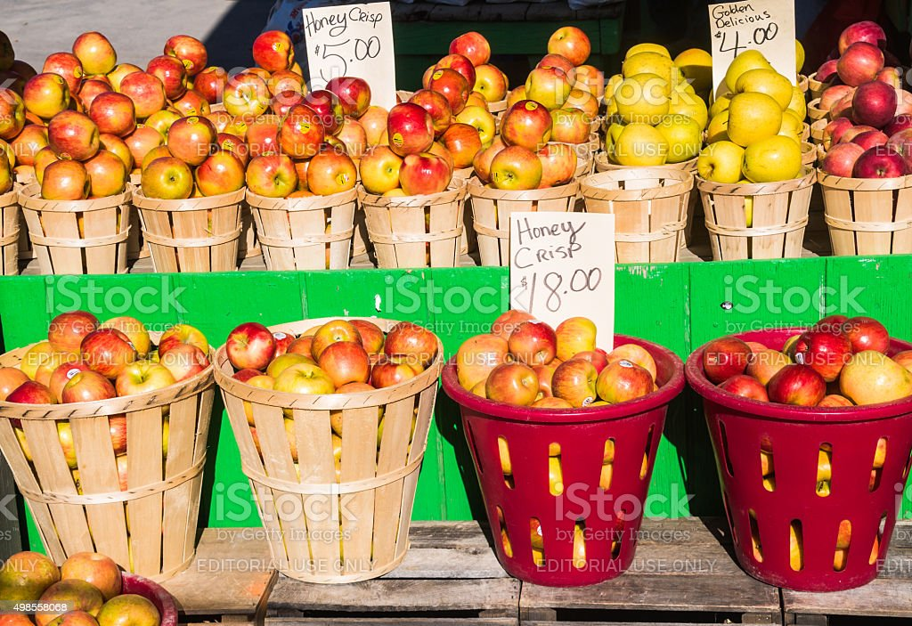 Apple Varieties stock photo