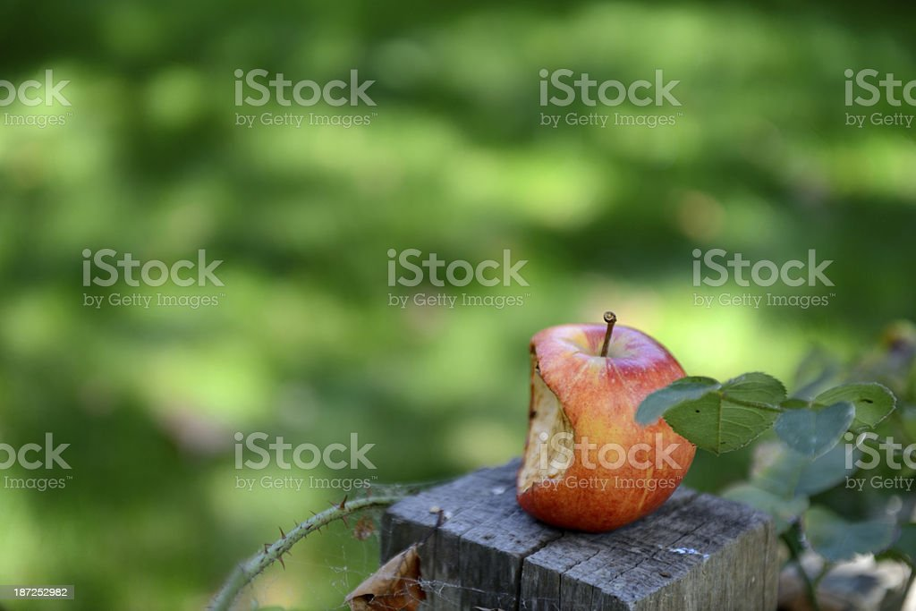 Apple with a bite in memory of Steve Jobs stock photo
