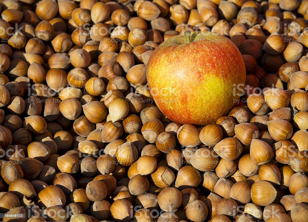 Apple with cobnuts stock photo