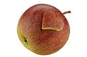 Apple with engraved heart - isolated