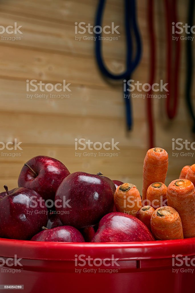 Apples and Carrots, as treats for horses. stock photo