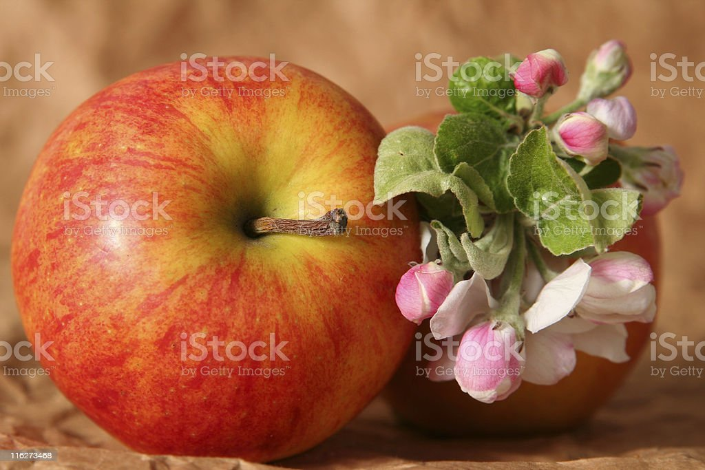 Apples and flowers royalty-free stock photo