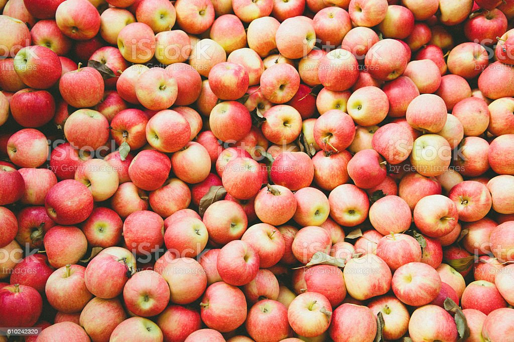 Apples at the market stock photo