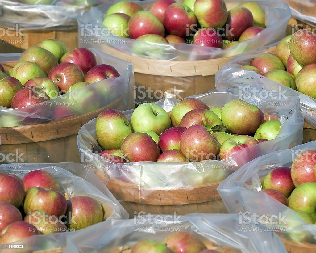 Apples by the bushel stock photo