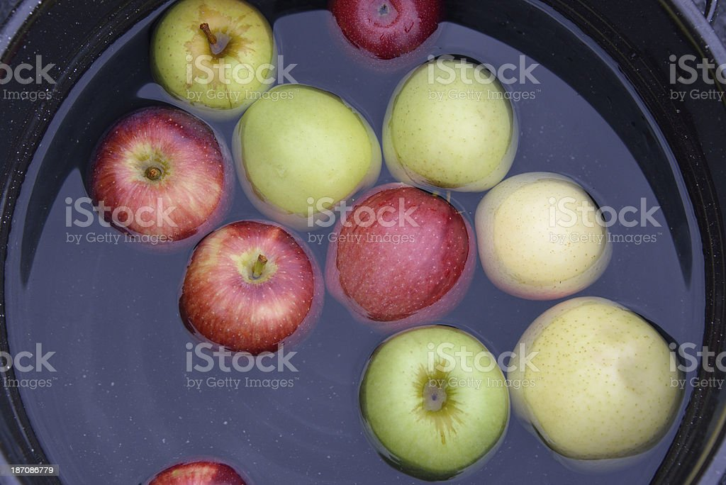 Apples Floating in Bucket for Dunking royalty-free stock photo