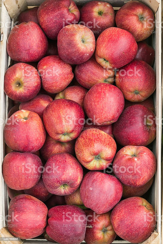 Apples in crate stock photo