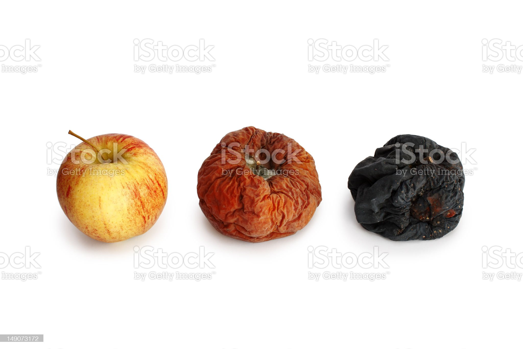 apples in different stages of decay, isolated royalty-free stock photo