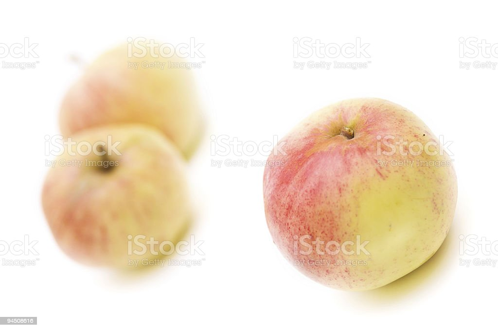 Apples isolated stock photo