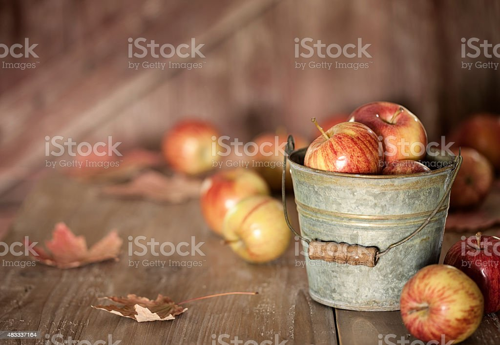 Apples on a Rustic Old Wood Table stock photo