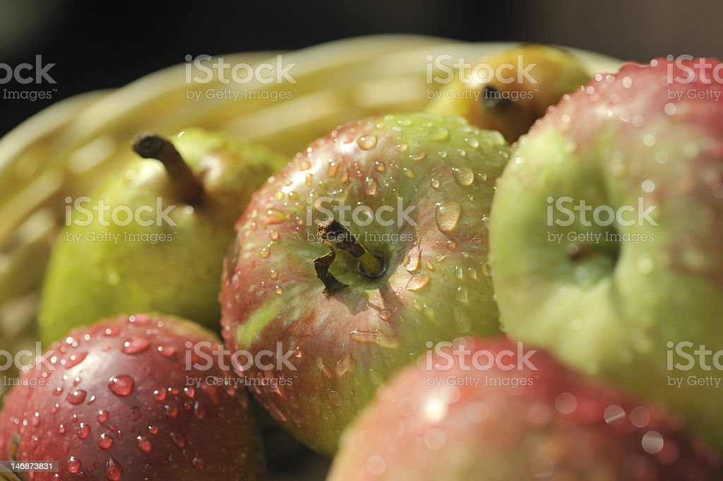 Manzanas foto de stock libre de derechos