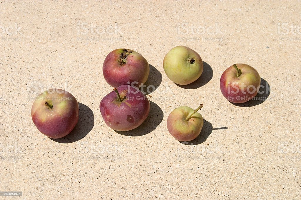 Apples royalty-free stock photo