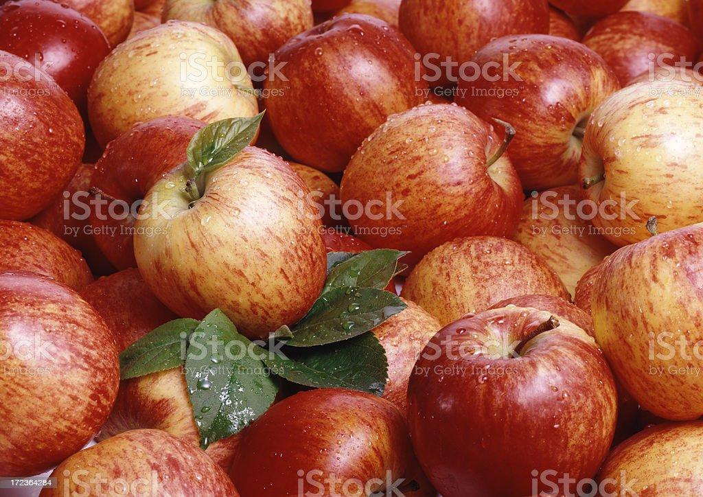 Apples wallpaper (6) stock photo