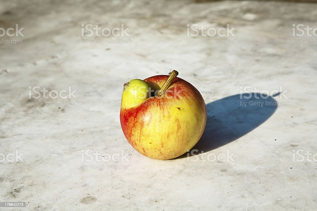 apples with interresting deformations give fantasy a chance royalty-free stock photo